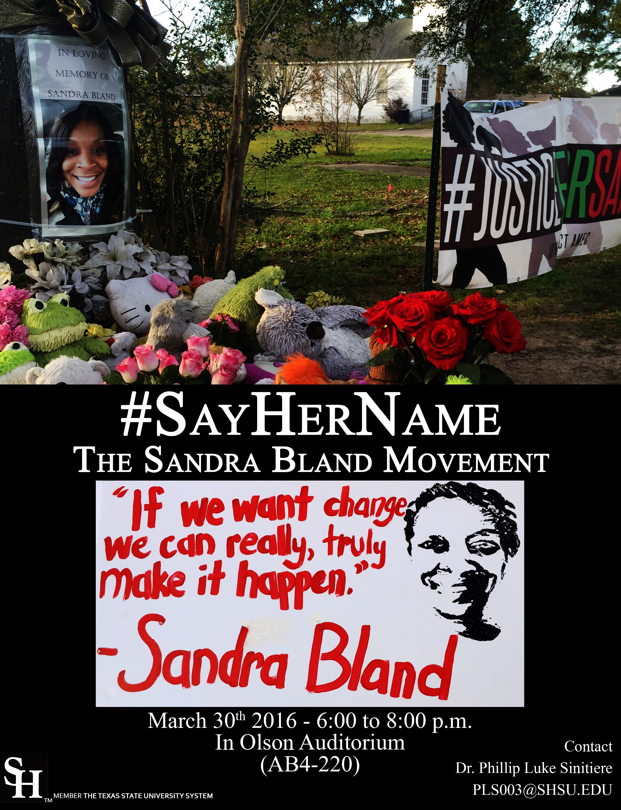 sayher the sandra bland movement aaihs sayher poster