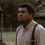 Muhammad Ali, <i>Freedom Road</i>, and the Legacy of Reconstruction