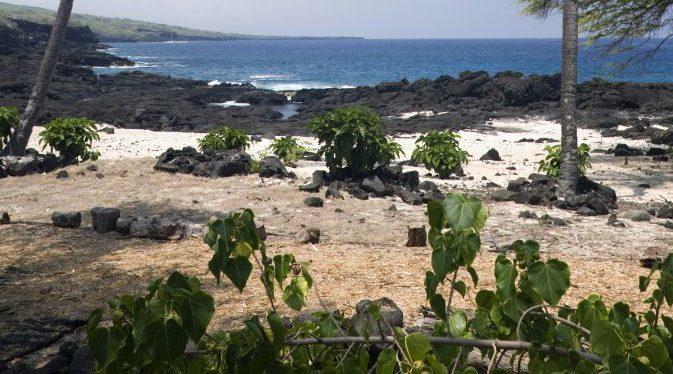 Kainaliu Beach. Source: www.hokulia.com.