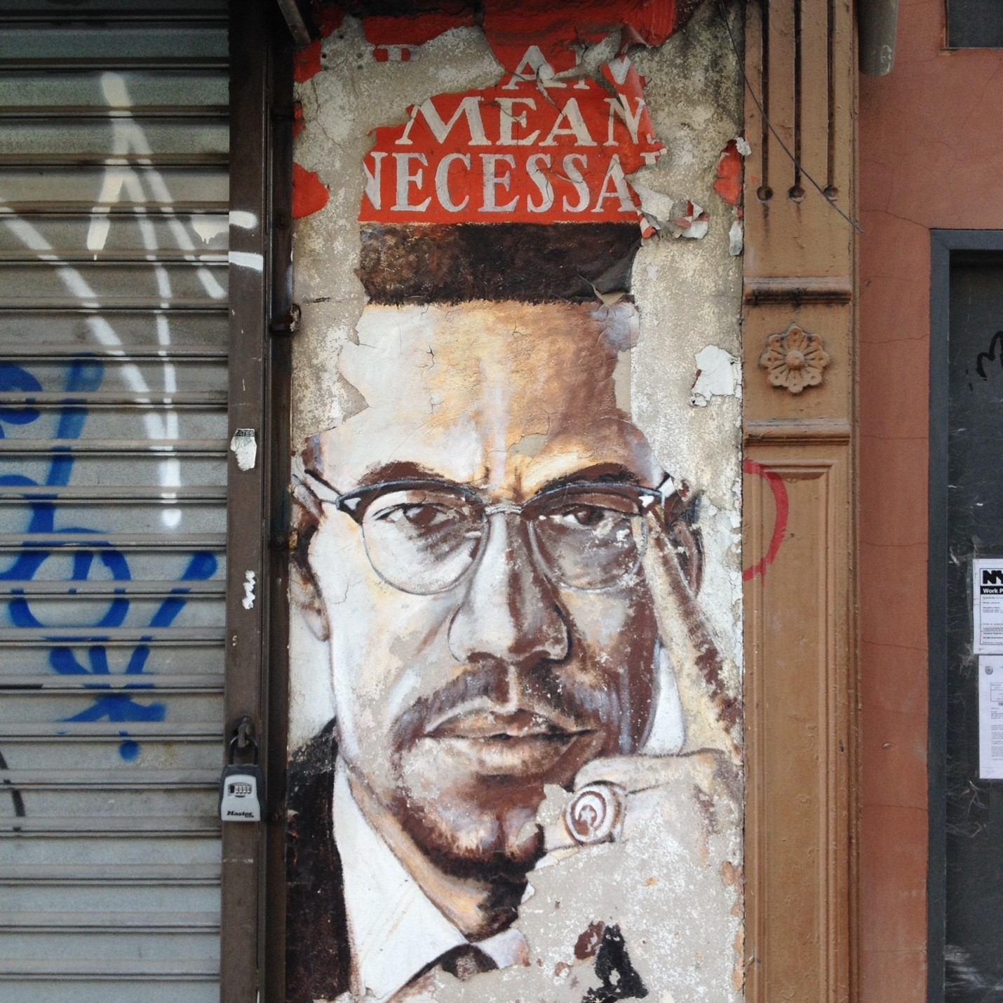 Malcolm X In Brooklyn Aaihs