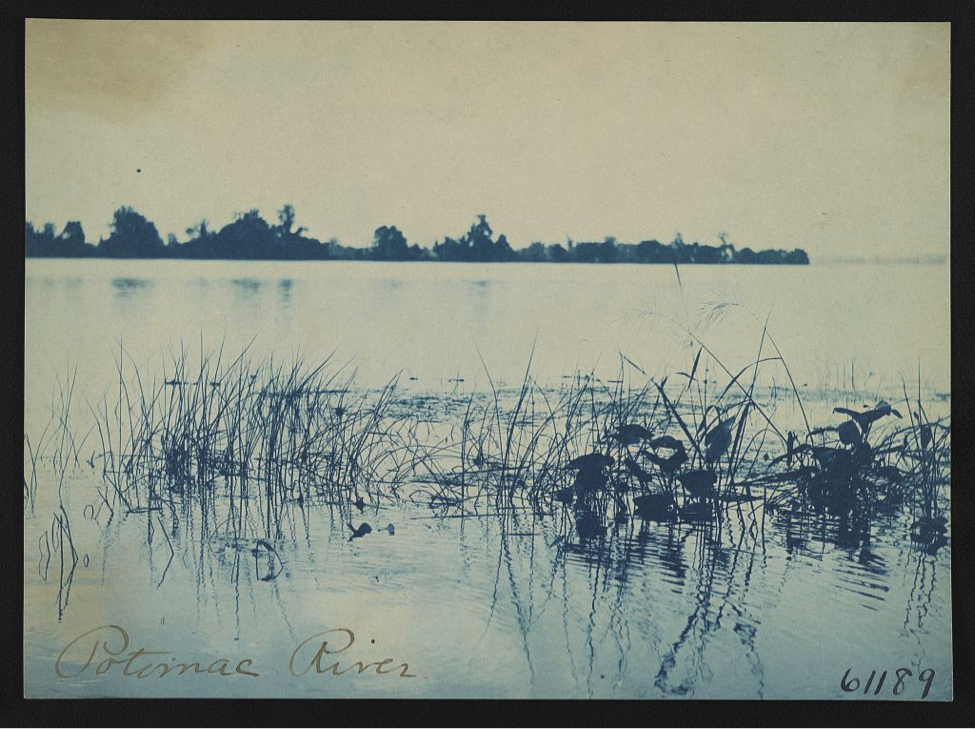 Frances Benjamin Johnston, Potomac River [ca. 1898]. Image: Library of Congress.