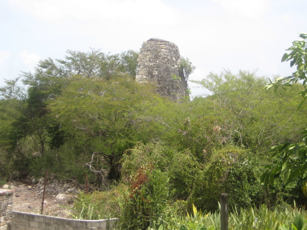Ruin of a sugar mill on Rooms Estate in St. Phillip's Parish, Antigua. Photo by Natasha Lightfoot (2009).