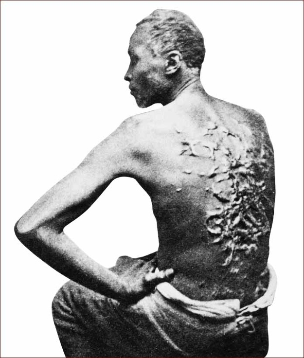Whipped back. Source: Wikimedia Commons.