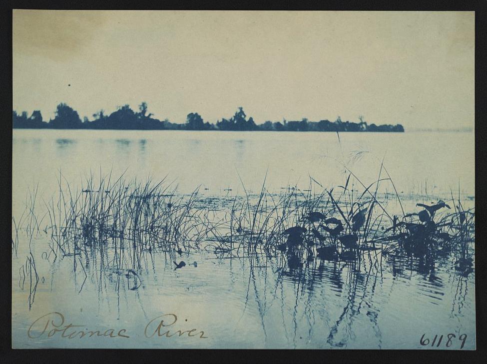 Frances Benjamin Johnston, Potomac River [ca. 1898]. Image: Library of Congress.