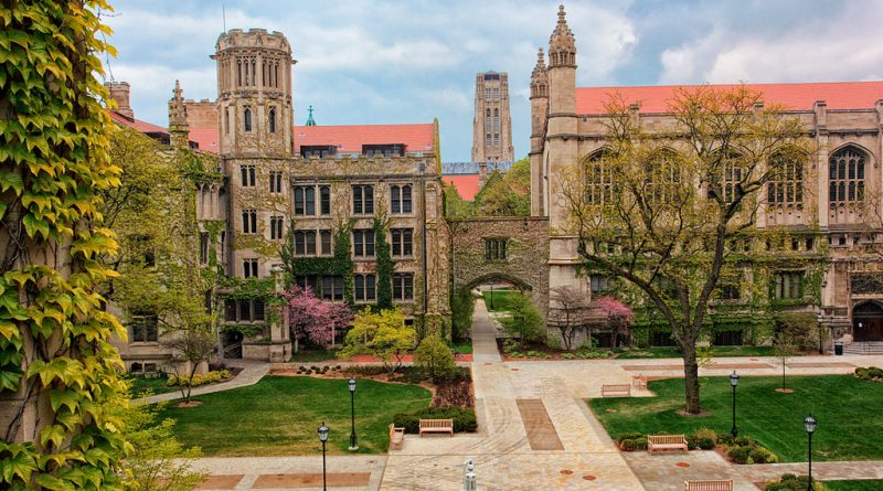 More than Diversity— A Call to Action from University of Chicago Faculty